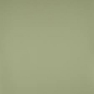 Radiant FR Green